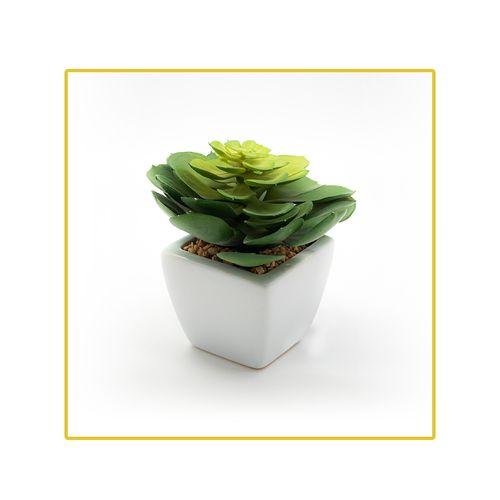 planta-permanente-decor-suculenta-19cm-ch06705466-096211