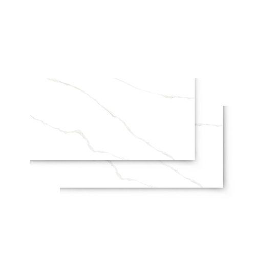 piso-porc-helena-esm-ret-monet-62x121-hac-120-052-110166-110166-1