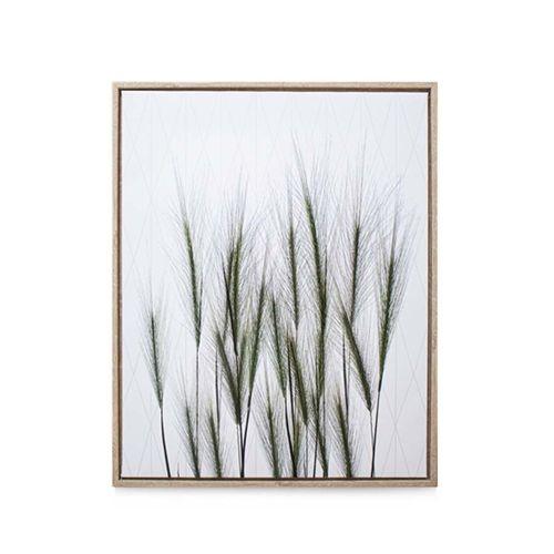 quadro-casa-ok-mdf-40x50cm-vegetacao-verde-ok-80214-110056-110056-1